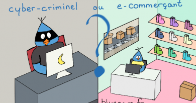 e-commerçant ou cybercriminel
